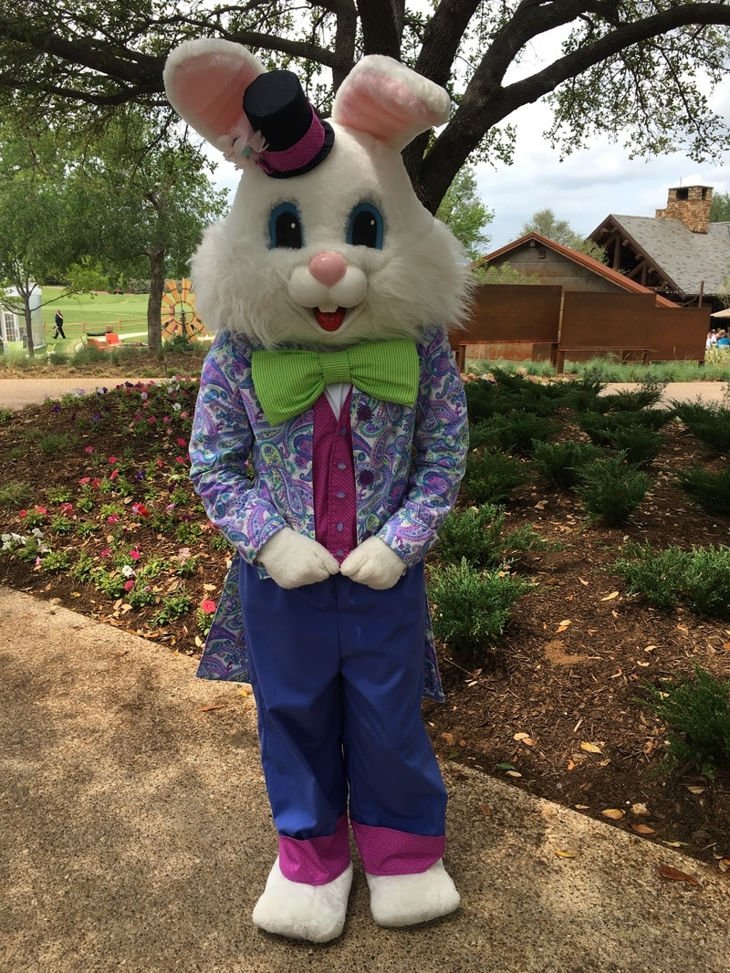 easter bunny rental dalla texas, rent easter bunny  dfw